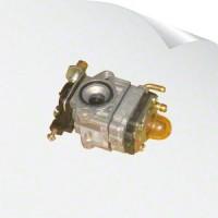 Carburettor / Fuel