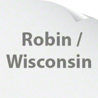 Robin / Wisconsin Coils & Accessories